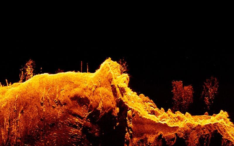 Element - HyperVision Down фото экрана дисплея | Raymarine - A Brand by FLIR